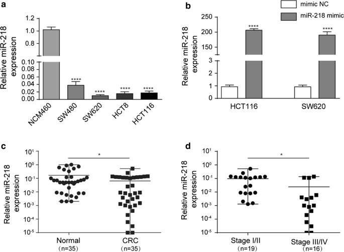 MiR-218 regulates epithelial–mesenchymal transition and angiogenesis