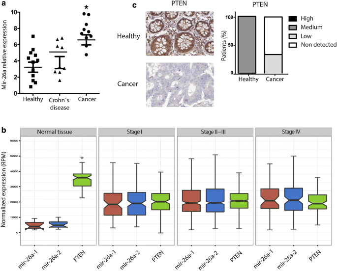 Cell Migration And Proliferation Are Regulated By Mir 26a In Colorectal Cancer Via The Pten Akt Axis Cancer Cell International Full Text