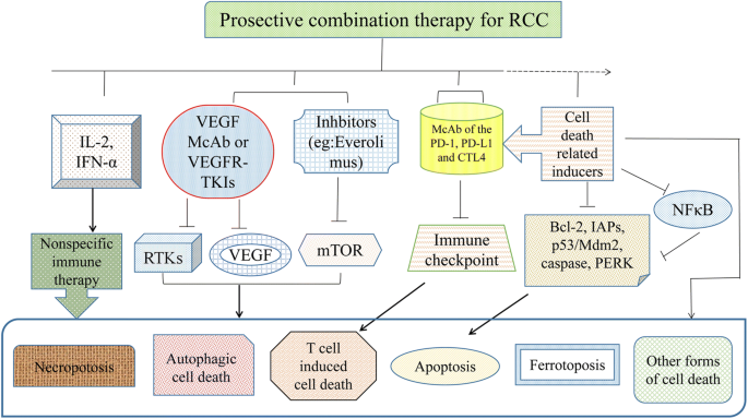 Cell death-related molecules and biomarkers for renal cell