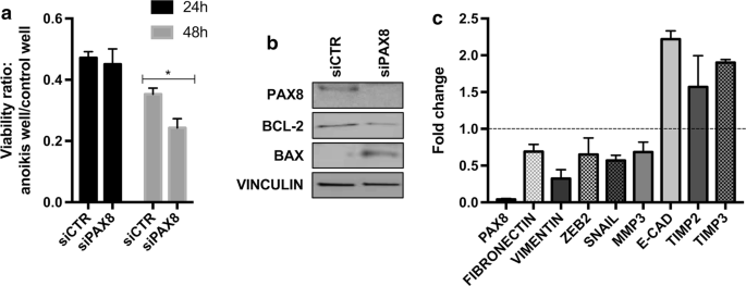 Pax8 Expression In High Grade Serous Ovarian Cancer Positively Regulates Attachment To Ecm Via Integrin B3 Cancer Cell International Full Text