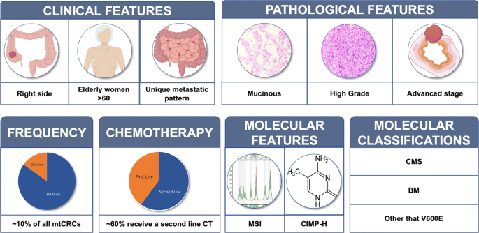 The Heterogeneous Clinical And Pathological Landscapes Of Metastatic Braf Mutated Colorectal Cancer Cancer Cell International Full Text