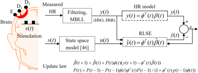 Adaptive filtering of physiological noises in fNIRS data