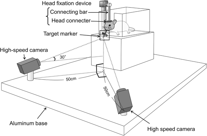 Development and evaluation of a jaw-tracking system for mice
