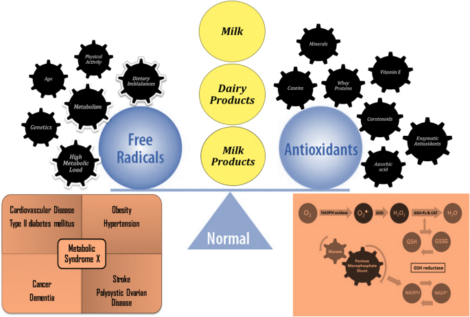 Antioxidant properties of Milk and dairy products: a comprehensive