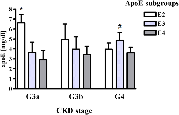 Apolipoprotein E gene polymorphism and renal function are
