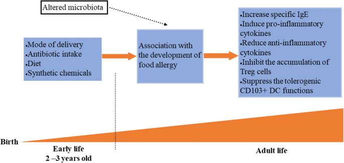 Dysbiosis and allergies, Joalis - detoxication medicine