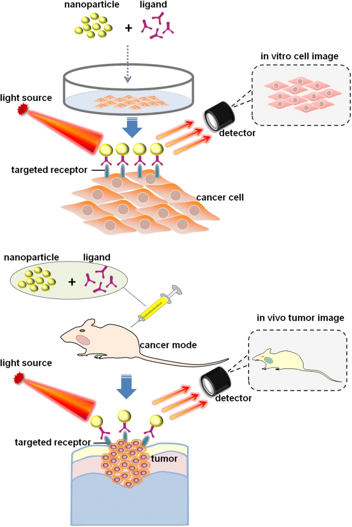 Nanotechnology: a promising method for oral cancer detection