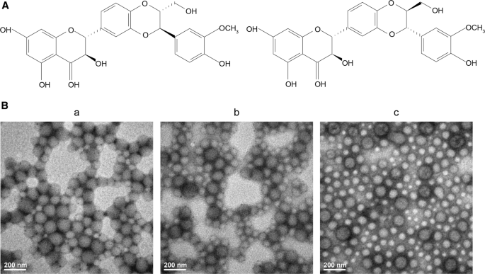Chitosan-functionalized lipid-polymer hybrid nanoparticles