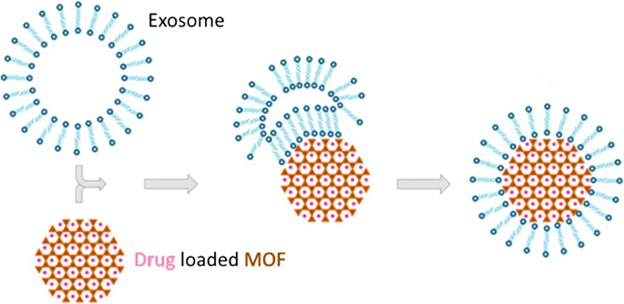 Recent advancements in the use of exosomes as drug delivery systems