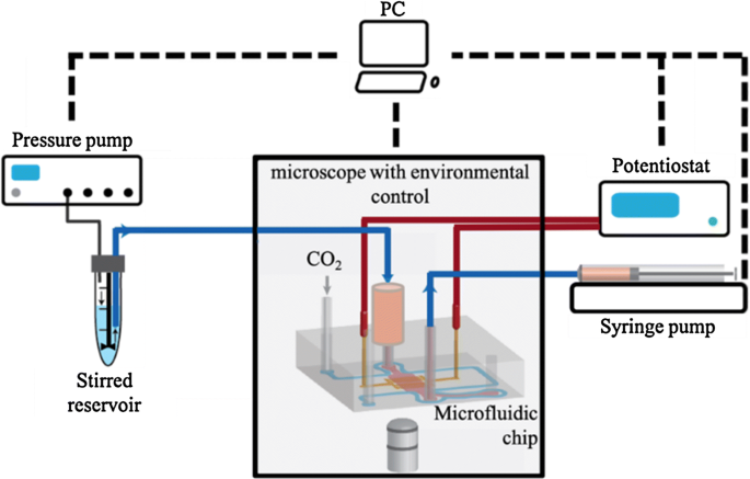 Microfluidics for studying metastatic patterns of lung ... on