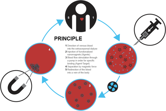 Biochemical functionality of magnetic particles as