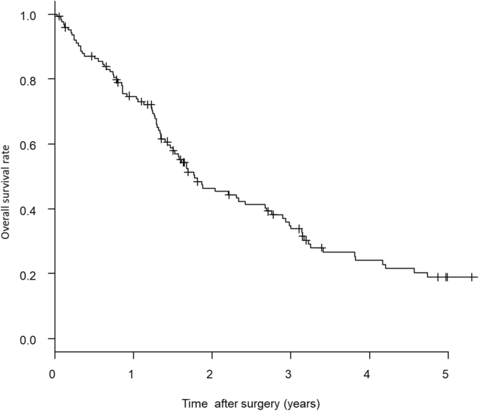 Long Term Outcomes After Surgical Resection In Patients With Stage Iv Colorectal Cancer A Retrospective Study Of 129 Patients At A Single Institution World Journal Of Surgical Oncology Full Text