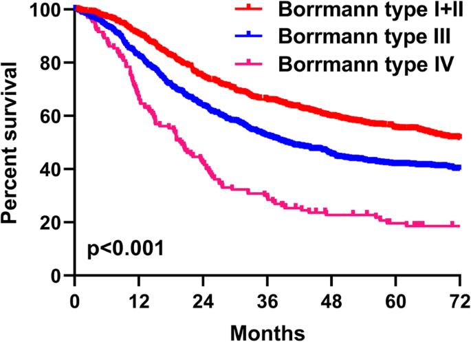 gastric cancer borrmann condylomata acuminata behandlung