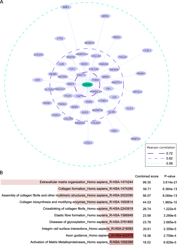 Grem1 Is Associated With Metastasis And Predicts Poor Prognosis In Er Negative Breast Cancer Patients Cell Communication And Signaling Full Text