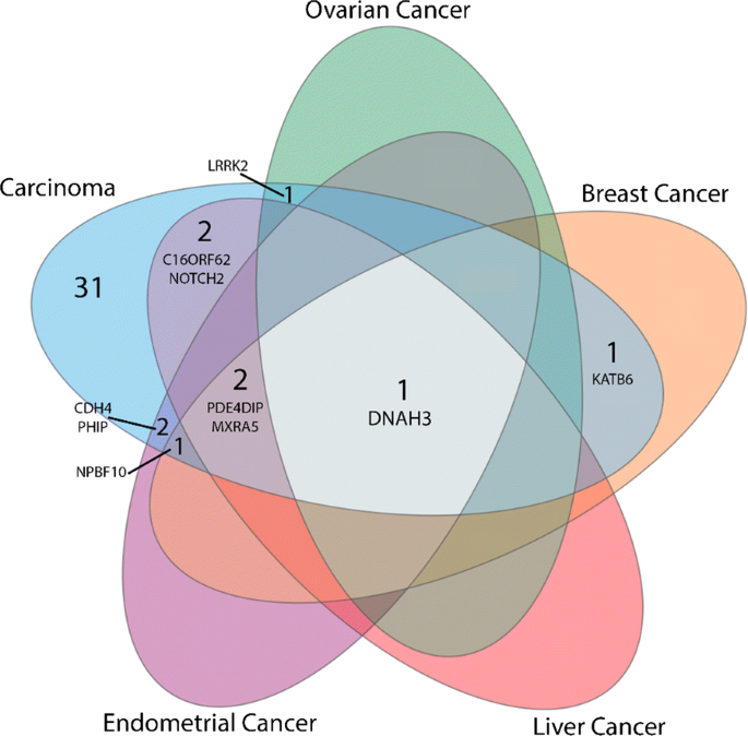 Family Specific Genetic Predisposition To Breast Cancer Results From Tunisian Whole Exome Sequenced Breast Cancer Cases Journal Of Translational Medicine Full Text