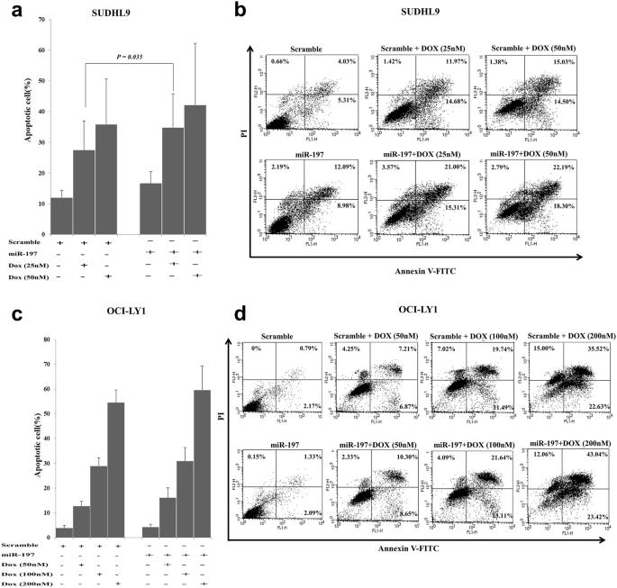 Clinicopathologic implication of microRNA-197 in diffuse