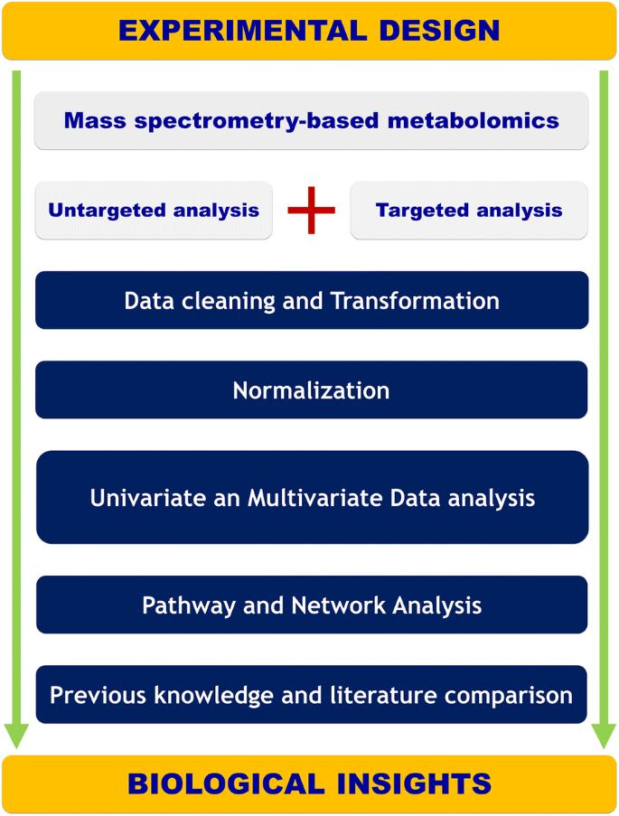 Unveiling metabolic remodeling in mucopolysaccharidosis type III