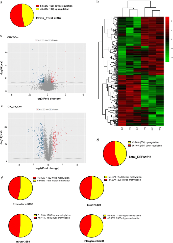 Revealing the pathogenic changes of PAH based on multiomics