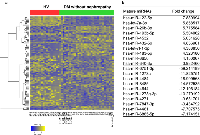 The circulating exosomal microRNAs related to albuminuria in