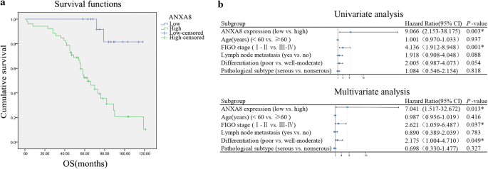 Annexin A8 Can Serve As Potential Prognostic Biomarker And Therapeutic Target For Ovarian Cancer Based On The Comprehensive Analysis Of Annexins Springerlink