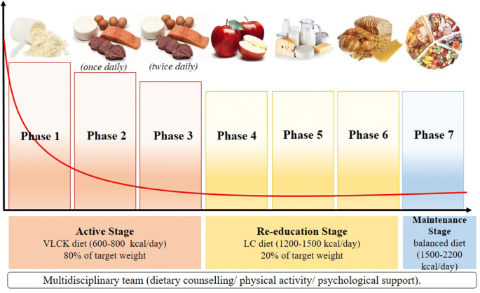 The management of very low-calorie ketogenic diet in obesity outpatient  clinic: a practical guide | Journal of Translational Medicine | Full Text