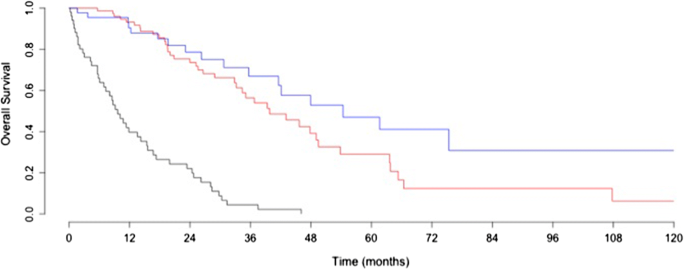 Patients With Stage Iv Epithelial Ovarian Cancer Understanding The Determinants Of Survival Journal Of Translational Medicine Full Text