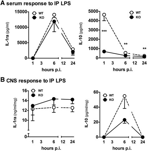 The p38alpha mitogen-activated protein kinase limits the CNS