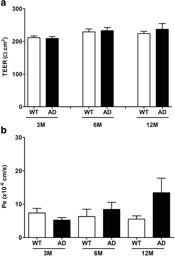 Longitudinal chemokine profile expression in a blood-brain barrier