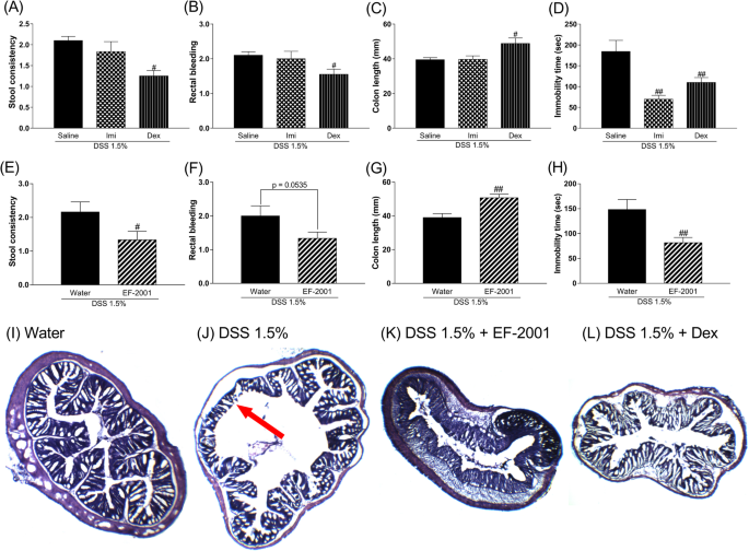 Effect Of Enterococcus Faecalis 2001 On Colitis And Depressive Like Behavior In Dextran Sulfate Sodium Treated Mice Involvement Of The Brain Gut Axis Journal Of Neuroinflammation Full Text
