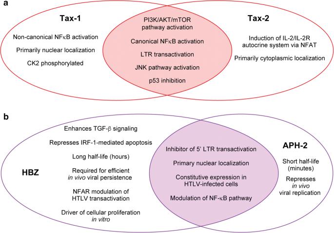 Comparative virology of HTLV-1 and HTLV-2 | Retrovirology