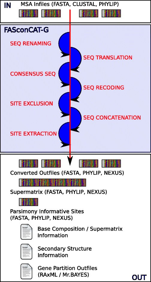 FASconCAT-G: extensive functions for multiple sequence alignment ...