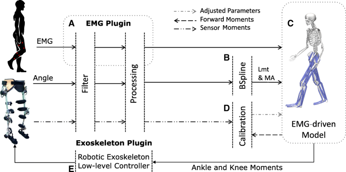 Voluntary control of wearable robotic exoskeletons by