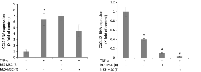 Human ES-derived MSCs correct TNF-α-mediated alterations in