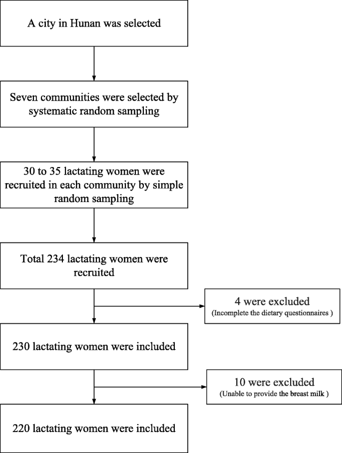 Dietary Patterns And Their Association With Breast Milk
