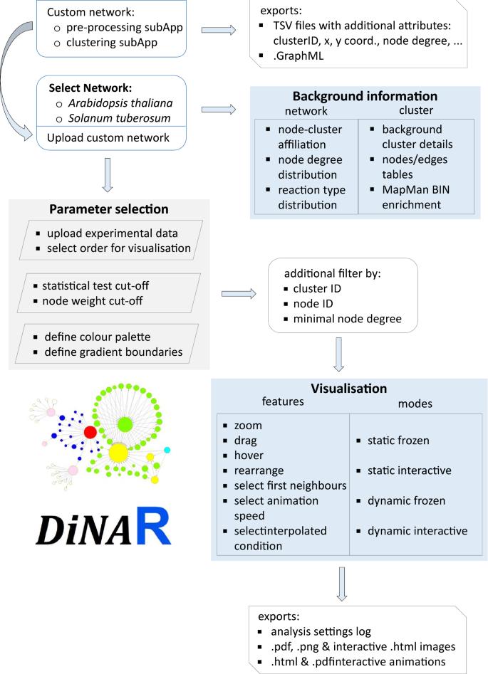 DiNAR: revealing hidden patterns of plant signalling dynamics using