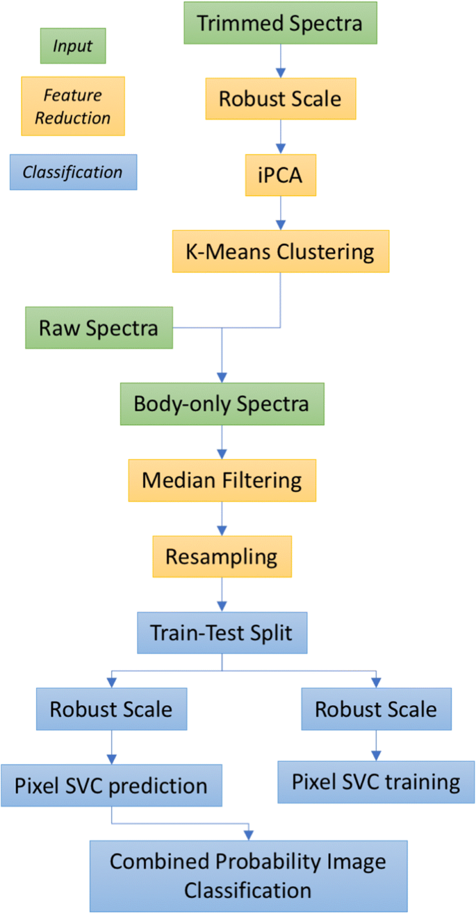 A method for real-time classification of insect vectors of