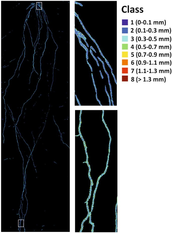 Hyperspectral imaging: a novel approach for plant root