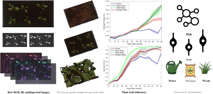 A spatio temporal spectral framework for plant stress phenotyping