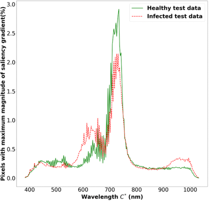 Plant disease identification using explainable 3D deep