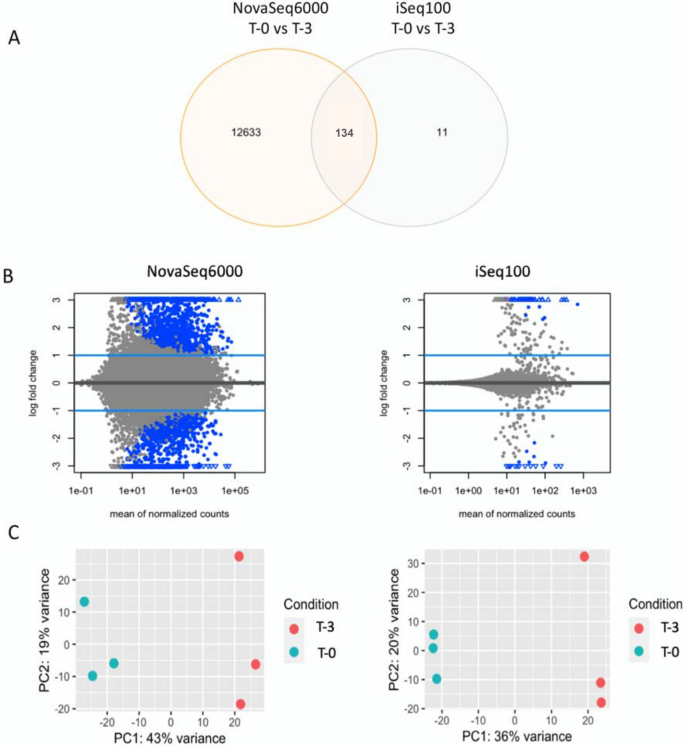 Small-scale sequencing enables quality assessment of Ribo-Seq data ...