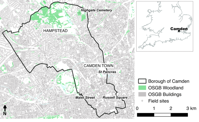 Estimating urban above ground biomass with multi-scale LiDAR