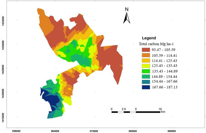 The effects of land cover change on carbon stock dynamics in a dry ...