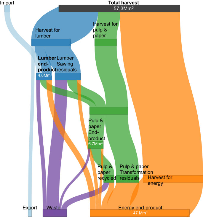 Carbon costs and benefits of France's biomass energy production