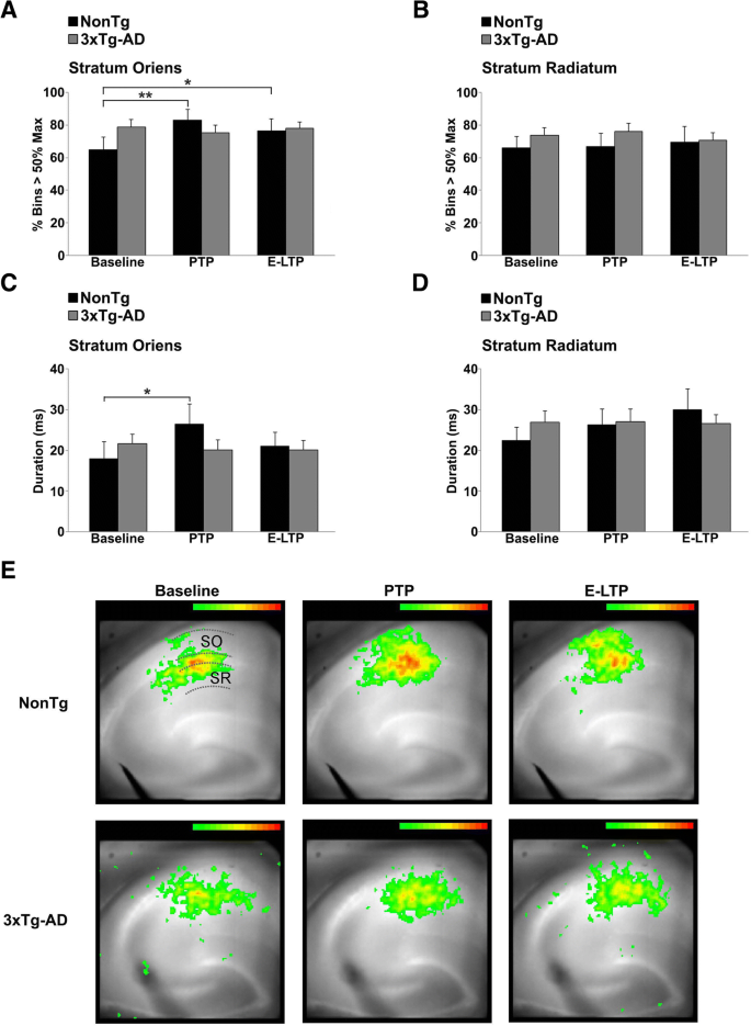 Reduced presynaptic vesicle stores mediate cellular and