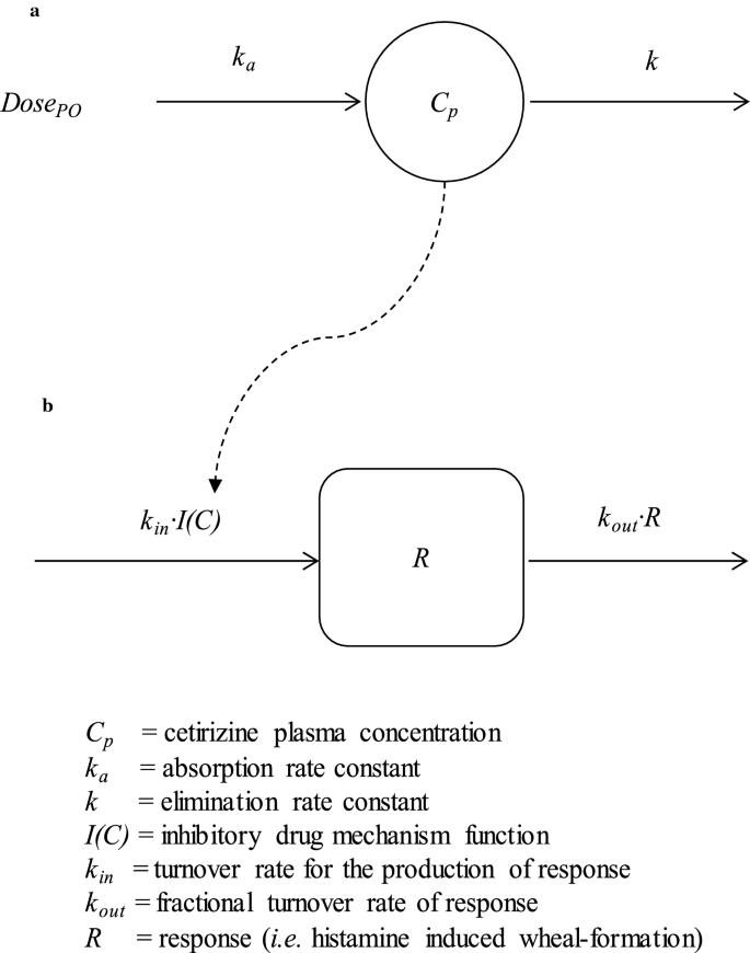 Cetirizine per os: exposure and antihistamine effect in the