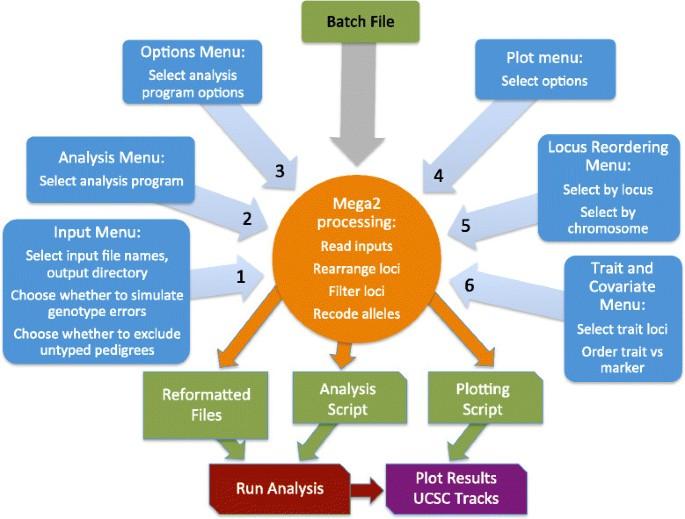 Mega2: validated data-reformatting for linkage and association