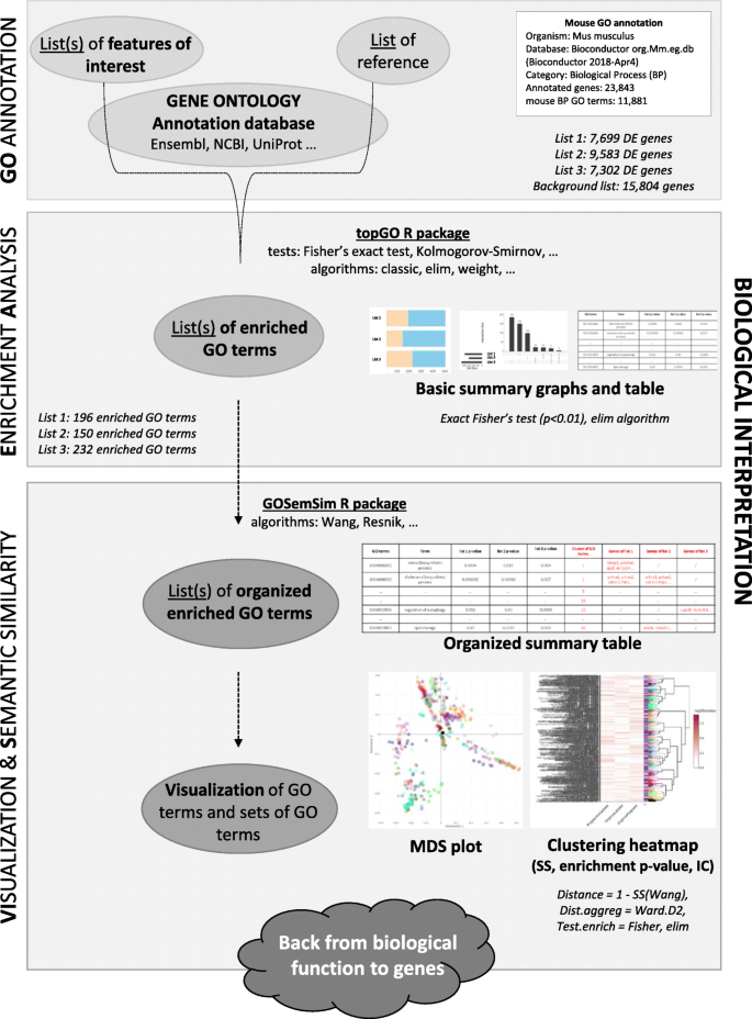 ViSEAGO: a Bioconductor package for clustering biological