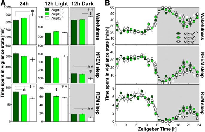 The effect of Neuroligin-2 absence on sleep architecture and