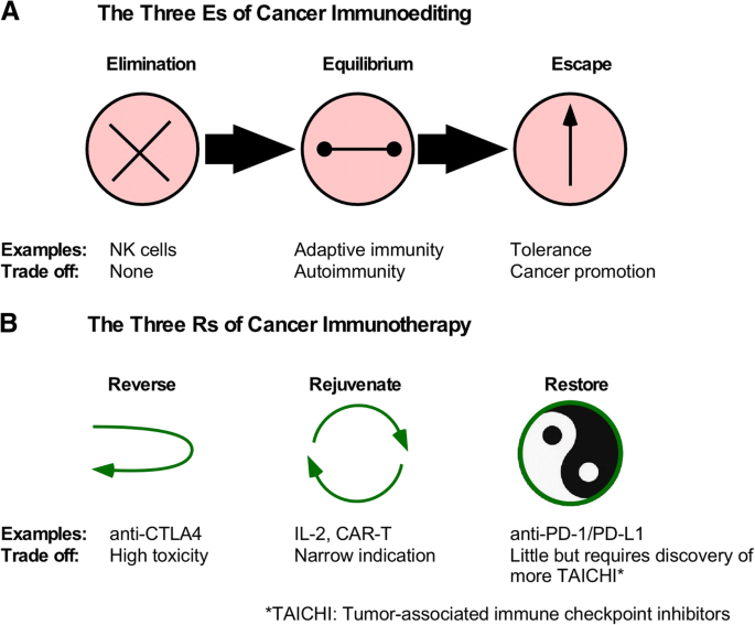 Recent updates in cancer immunotherapy: a comprehensive review and
