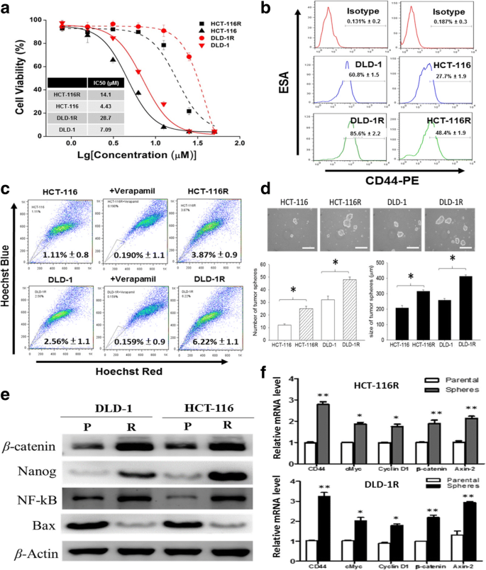Regorafenib Suppresses Colon Tumorigenesis And The Generation Of Drug Resistant Cancer Stem Like Cells Via Modulation Of Mir 34a Associated Signaling Journal Of Experimental Clinical Cancer Research Full Text